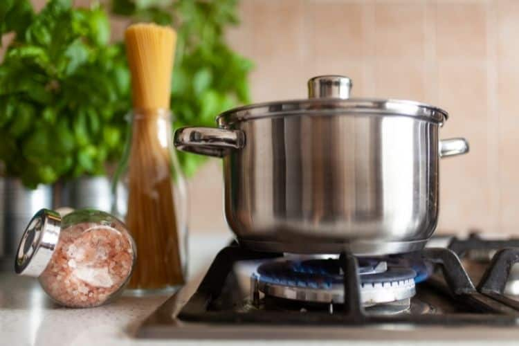 Commercial Cooking Pot